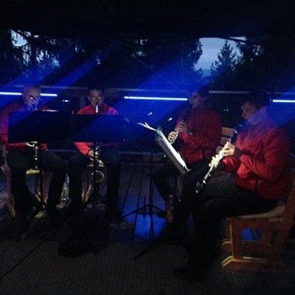 27.8.2014 / Večerní koncert, Stezka korunami stromů, Kramolín u Lipna nad Vltavou