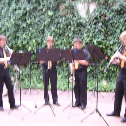 15.6.2010 / Koncert Na dvorku, Prachatice
