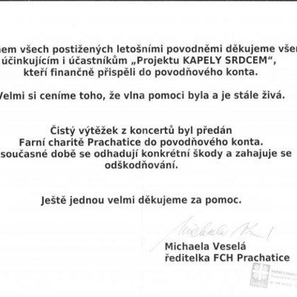18.7.2009 / Charitativní koncert, Kapely srdcem, Národní dům, Prachatice