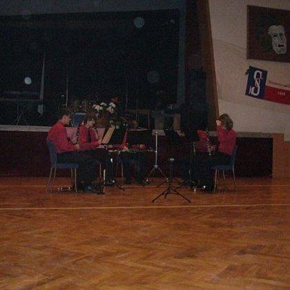 18.1.2008 / Ples, vystoupení, Strunkovice nad Blanicí